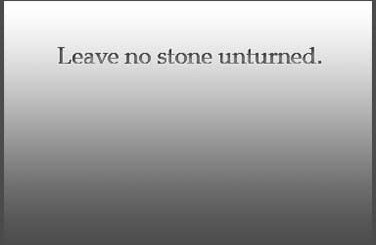 Quotations about stones: Leave no stone unturned