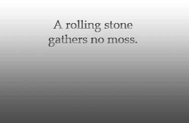 A rolling stone gathers moss